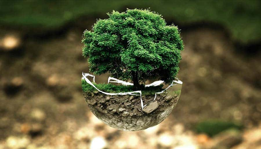 Holz reduziert Treibhausgase – Holz tut gut